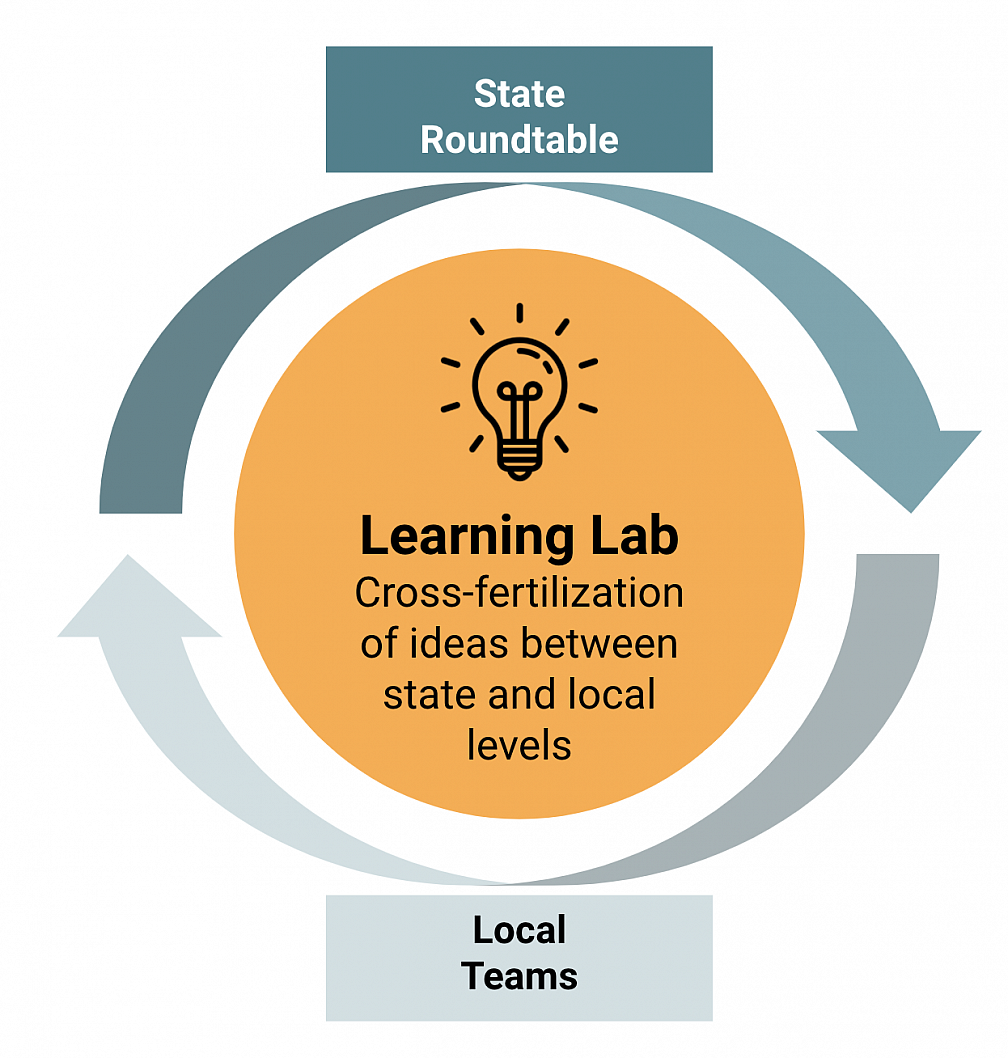 Graphic of local and state levels in the learning lab